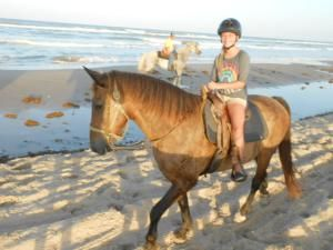HorsesOnBeach.jpg - South Padre Island Adventure Park